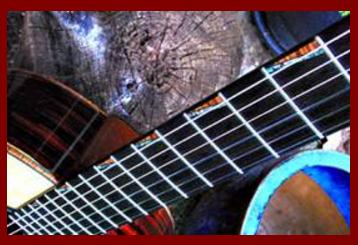 Classical Guitar Fingerboard
